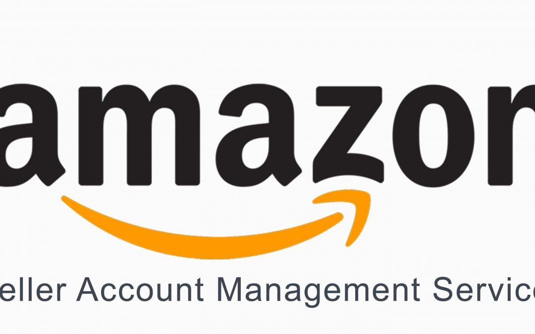 Amazon Seller Central o Amazon Vendor Central: diferencias entre ambas plataformas y sistemas de venta en el gigante del retail